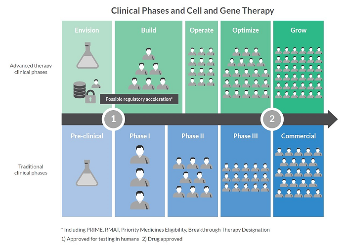 clinical phases for advanced therapies